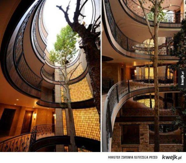 By coś wybudować, nie zawsze trzeba wycinać drzewa
