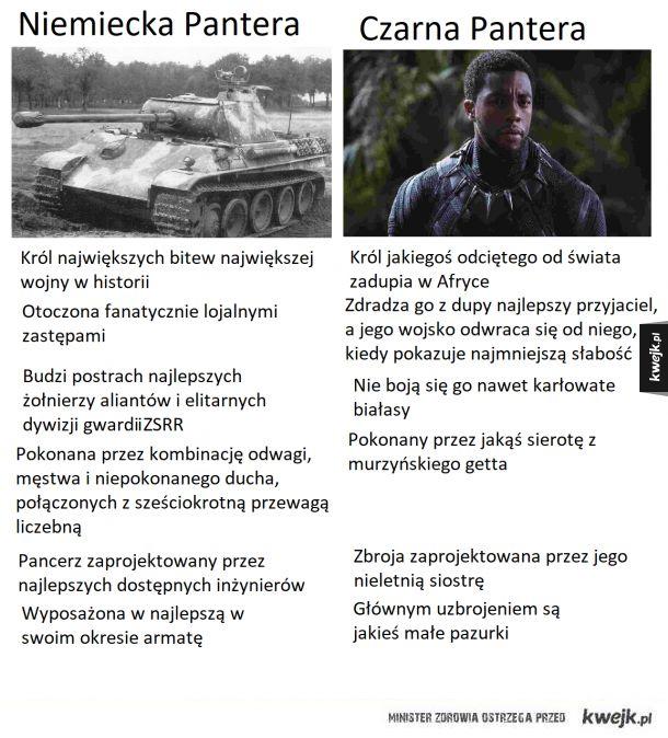 Panther vs Czarna Pantera