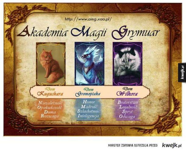 Zapisz się do internetowej szkoły magii! - AMG