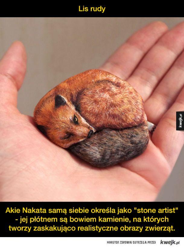 Zwierzęta malowane na kamieniach