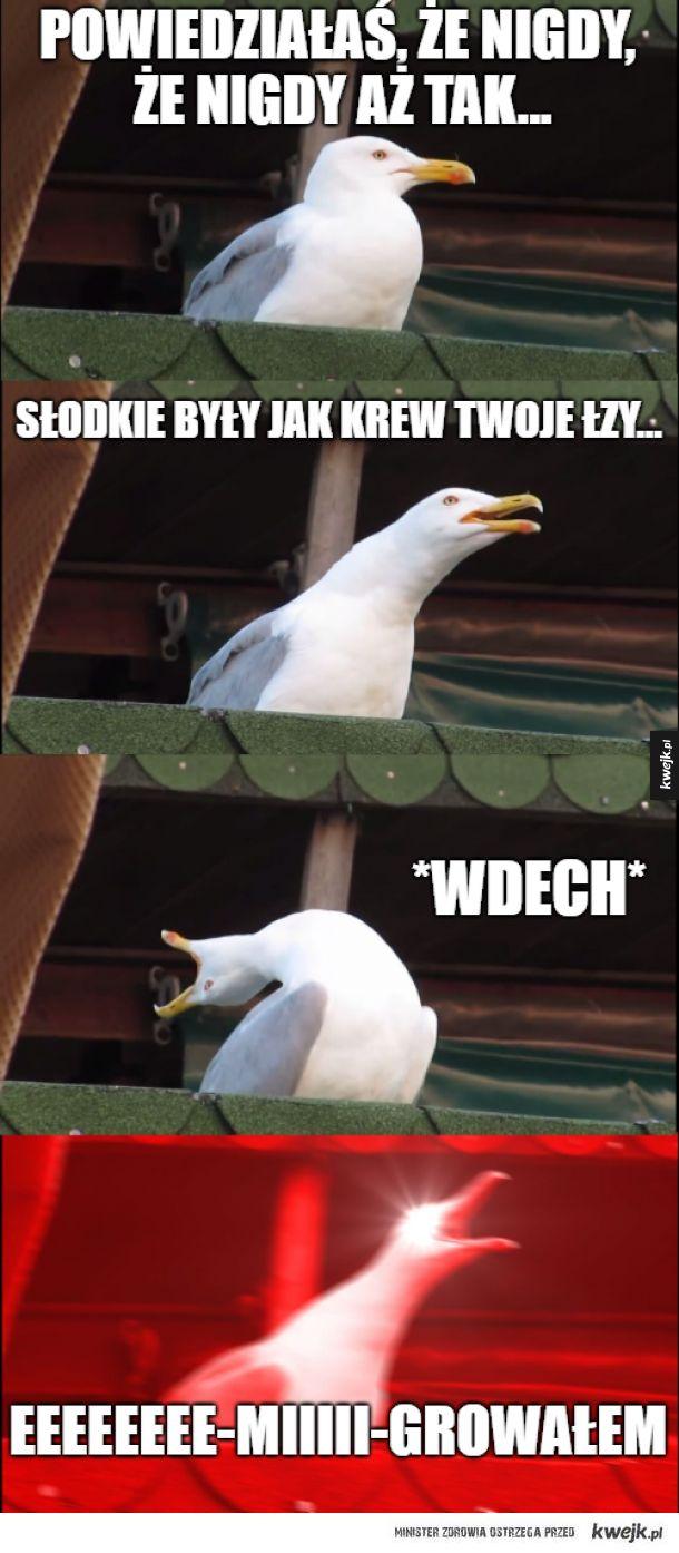 Jolka, Jolka
