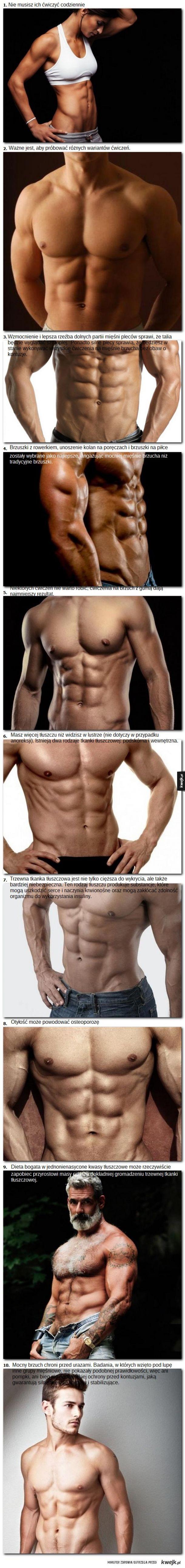 10 faktów na temat brzucha