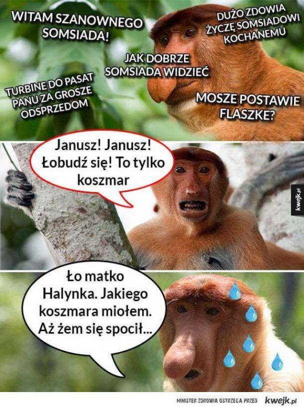 Życzliwy Janusz