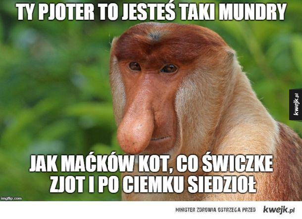 Oj Pjoter