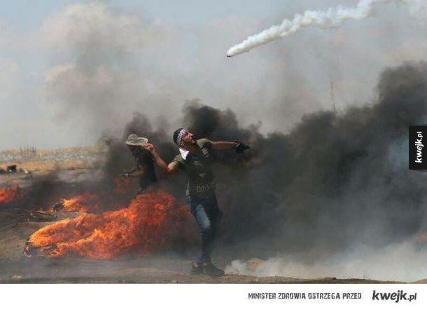 Palestyński protestujący wykorzysta rakietę tenisową, żeby odbić Granat pieprzowy
