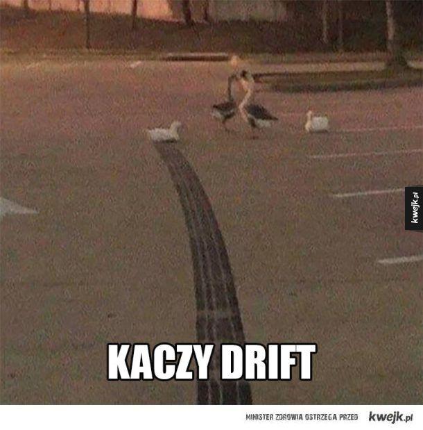 kaczy drift