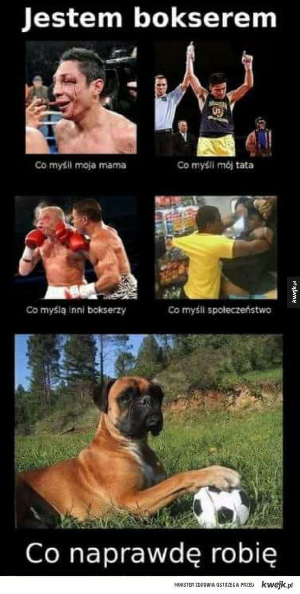 Życie boksera