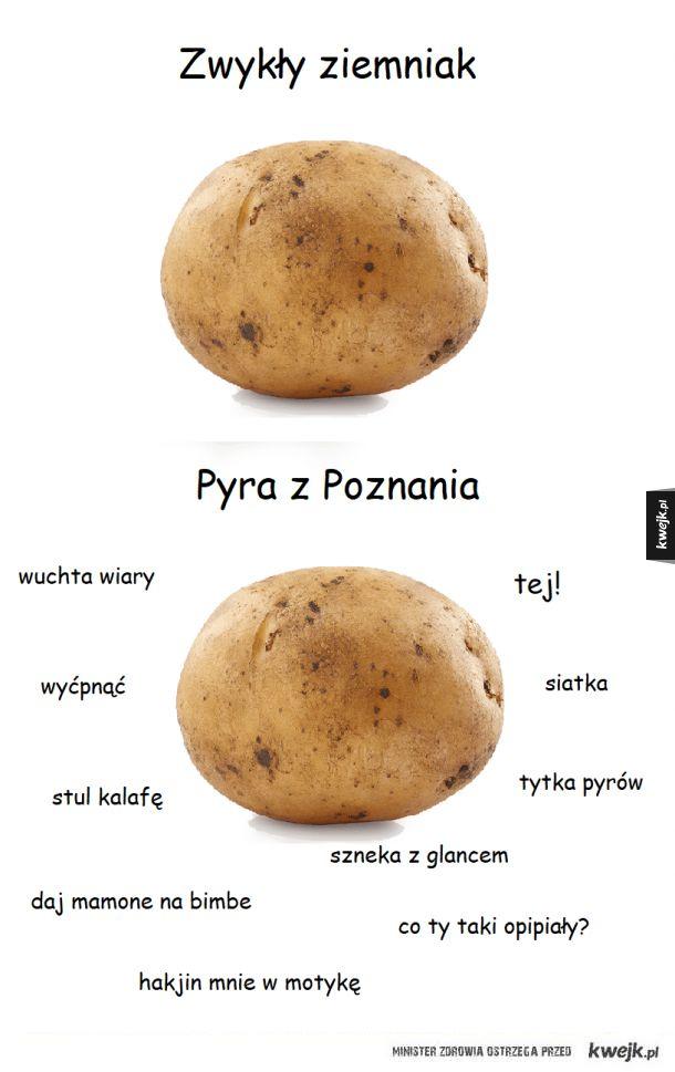 Poznańska Pyra
