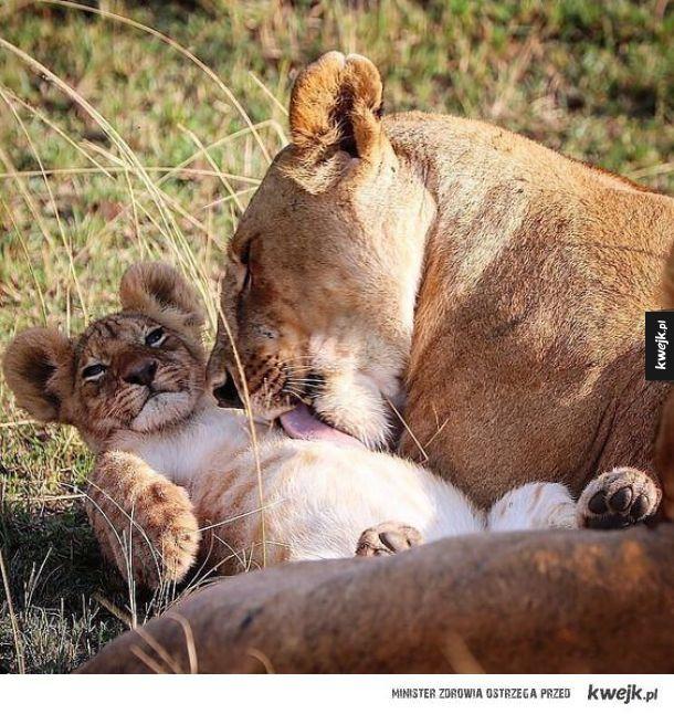 Mama myje dziecko