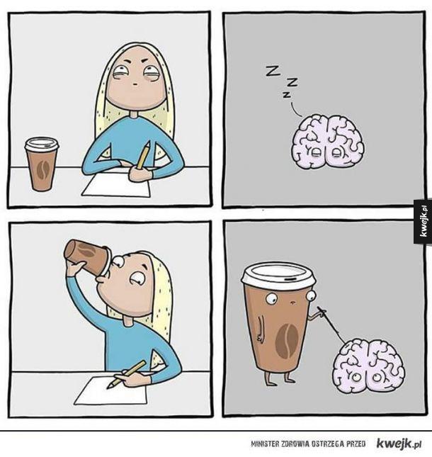 Tak działa kawa