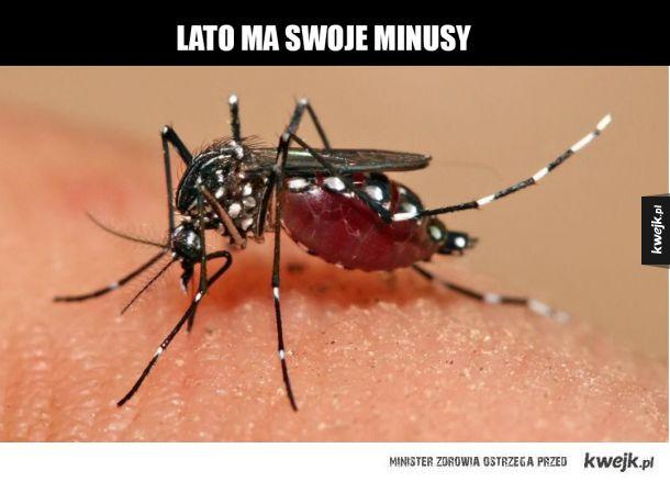 pieprzone komary