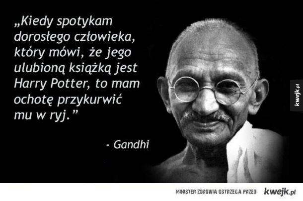 Porcja prawdziwej mądrości.
