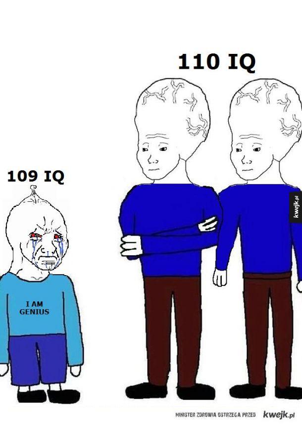 Kiedy ze znajomymi porównacie wyniki darmowego testu na inteligencję w internecie
