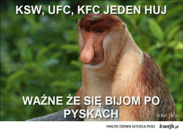 Janusz o KSW i MMA