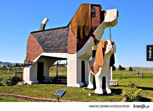 Hotel Dog Bark Park Inn (Cottonwood, USA)