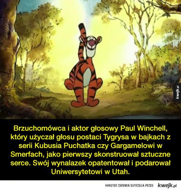 Ciekawostki o serialach animowanych