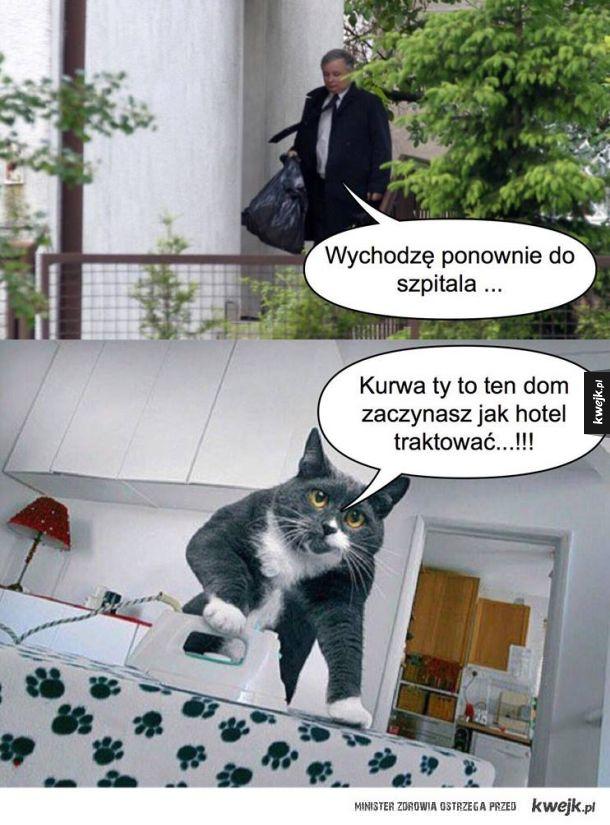 Ehhh Jarek Jarek