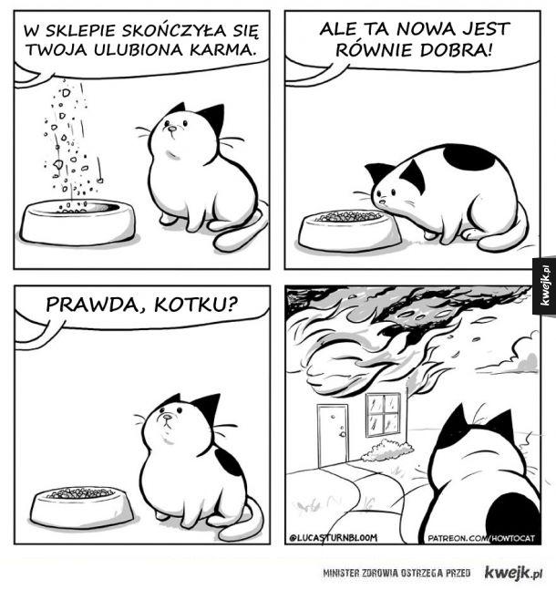Prawdziwe życie z kotem w komiksach Lucasa Turnblooma