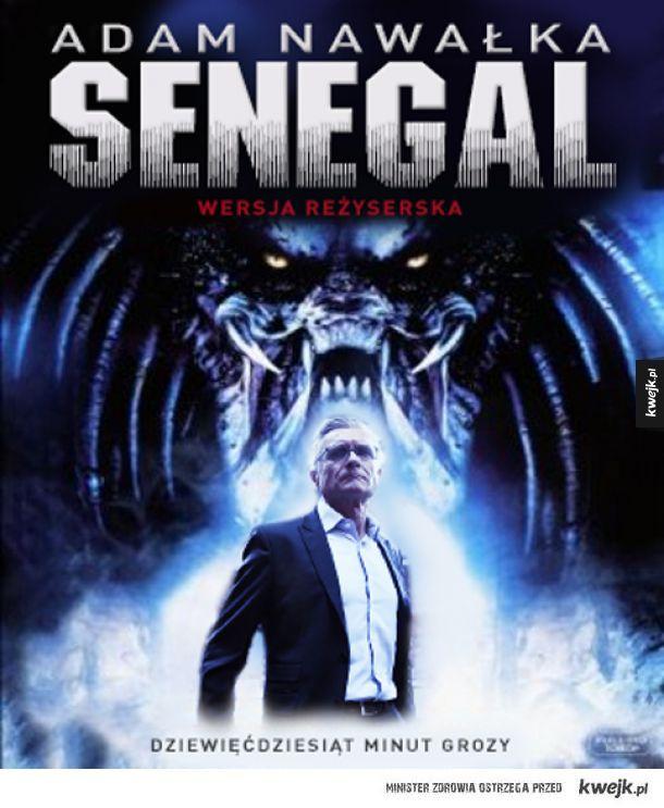 Polska Senegal - 90 minut grozy