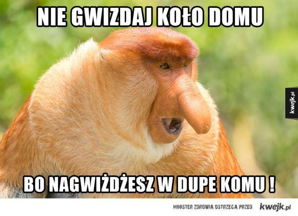 Janusz Nosacz