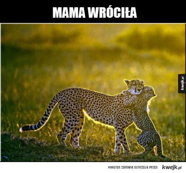 Z Mamą