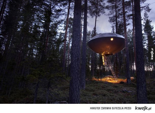 Domek na drzewie (Harads, Szwecja)
