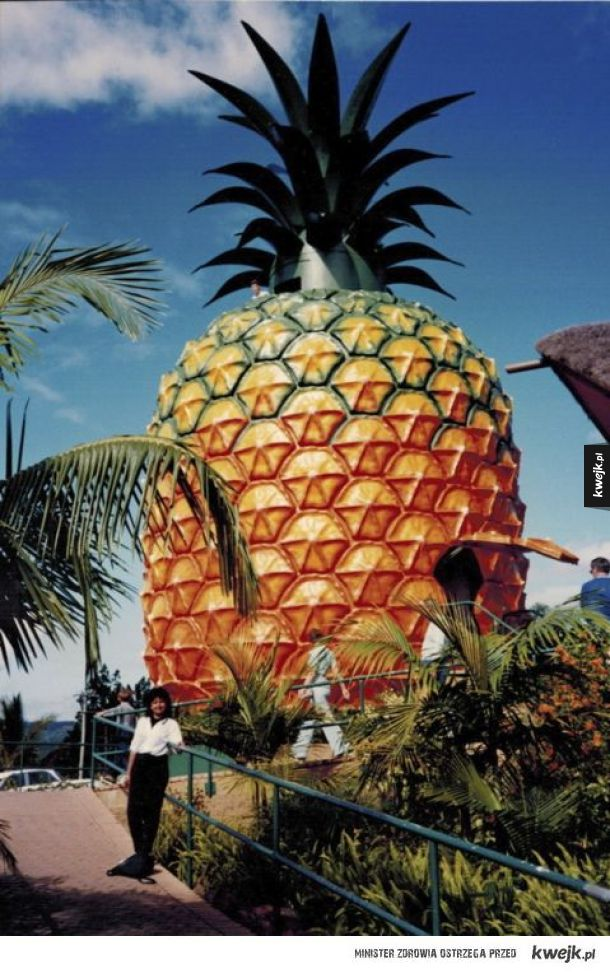 Prawdziwa chatka Spongeboba