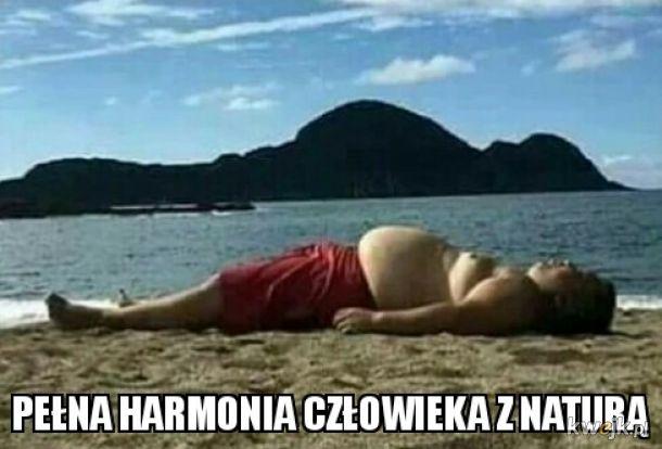 Harmonia...
