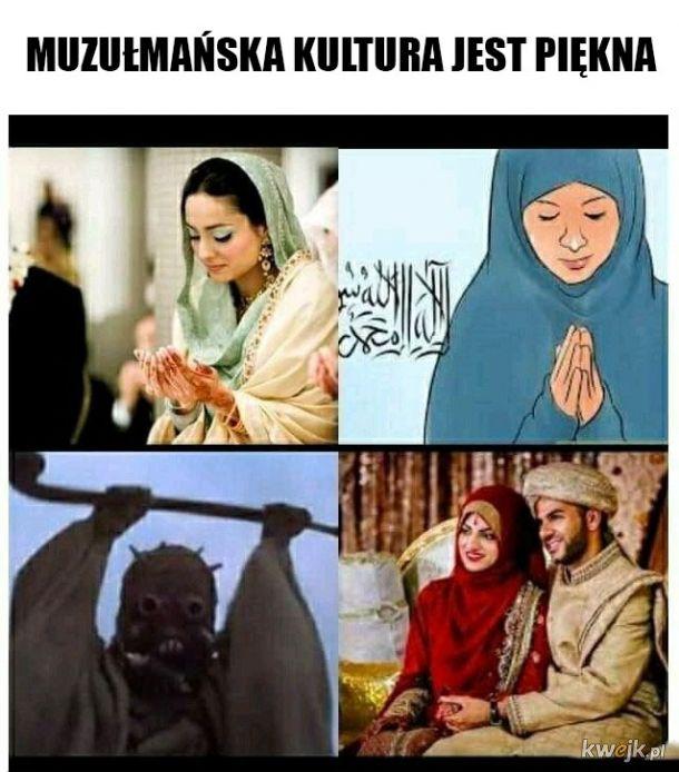 Cudowna kultura