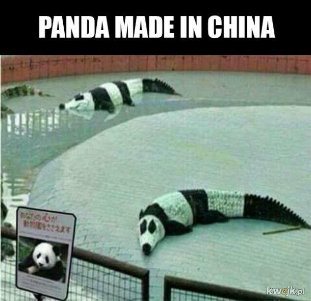 Panda w Chinach