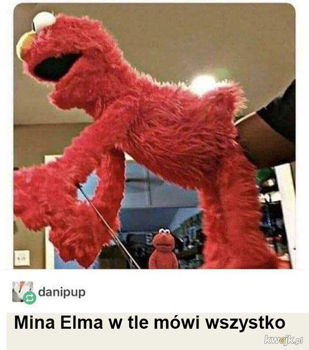 Elmo wie co go czeka