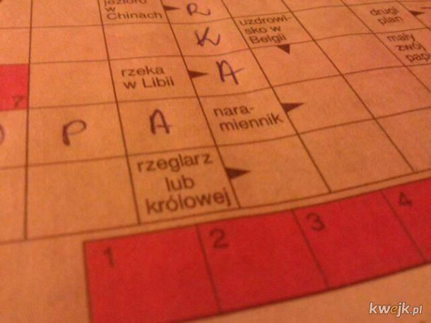 Polski trudny język