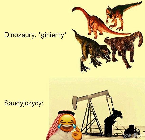 Saudyjczycy zadowoleni
