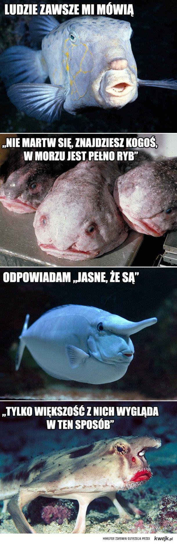 W morzu jest pełno ryb...