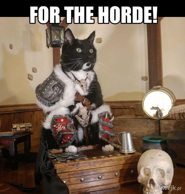 Wojownik hordy