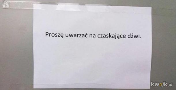 Język Polki trudny język