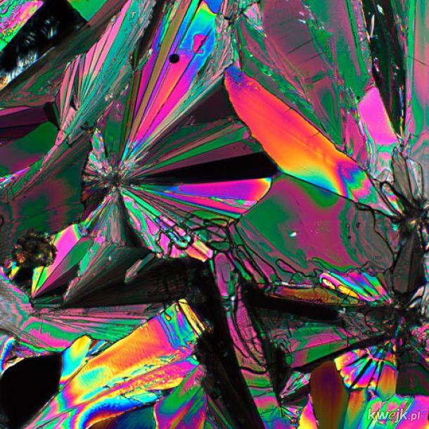 Witamina C pod mikroskopem