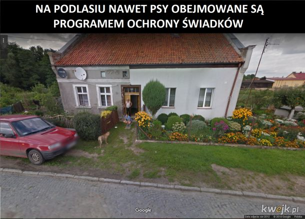 Pieseł vs Google Maps