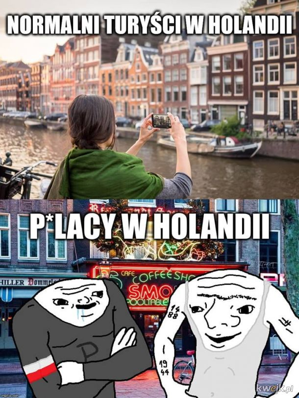Polaki w Holandii