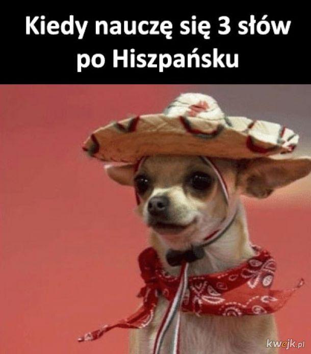 Jestę Hiszpanę