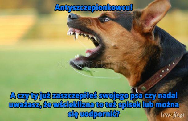 Antyszczepionkowcu!