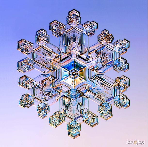 Płatek śniegu pod mikroskopem