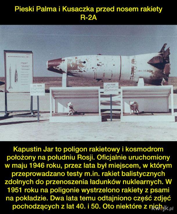 Fotografie z poligonu Kapustin Jar, z którego na orbitę wystrzelono psich kosmonautów