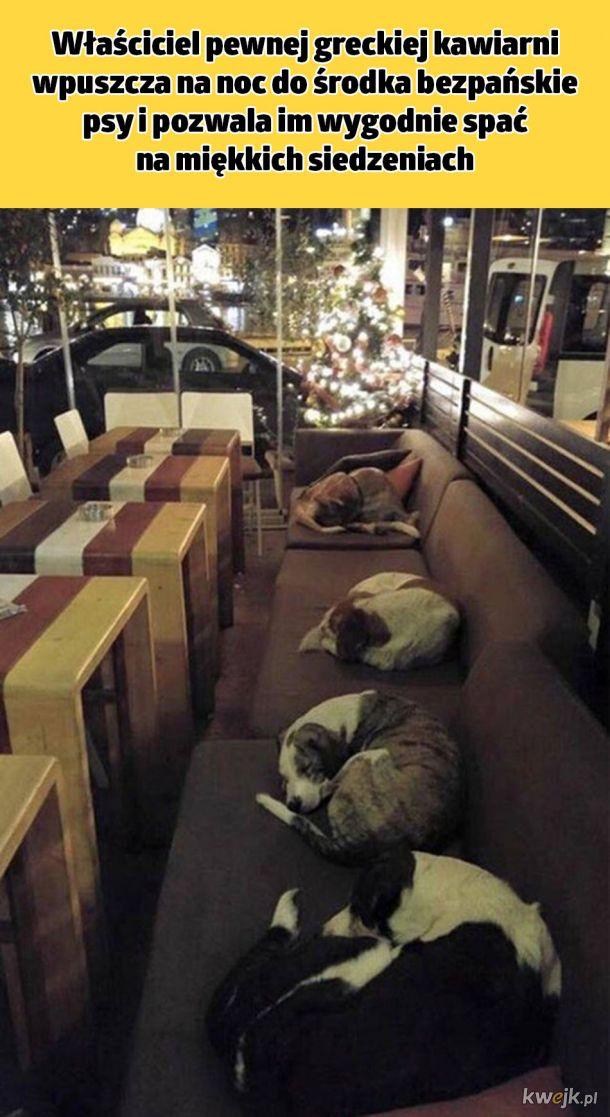 Tymczasem w greckiej restauracji