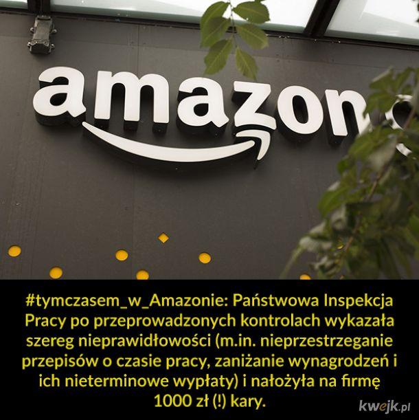 Amazon się nie podniesie
