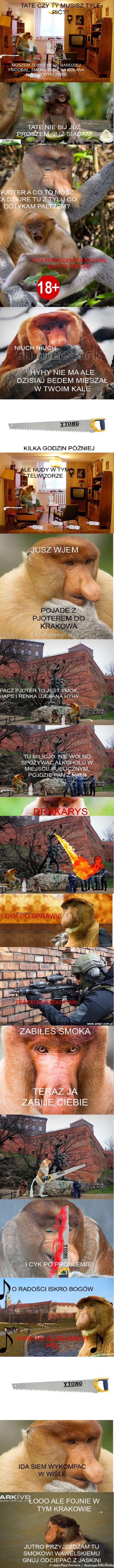 Pioter Jeźdźca Janusza