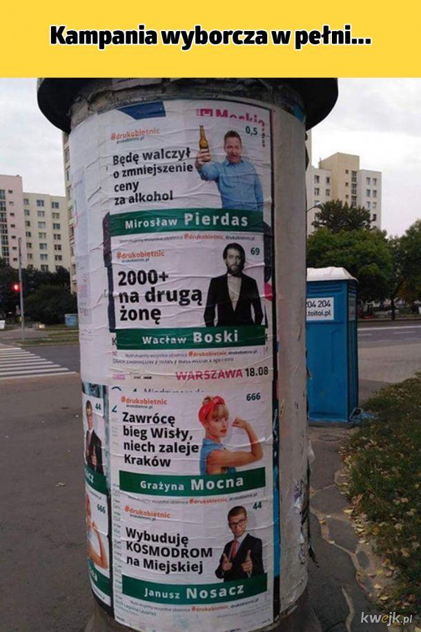 Janusze polityki