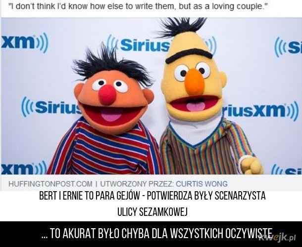 Bert i Ernie to para!
