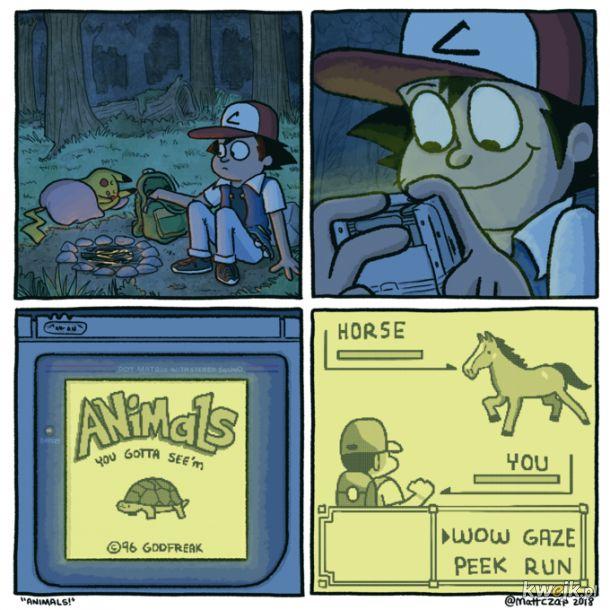 Tymczasem w swiecie pokemonów.