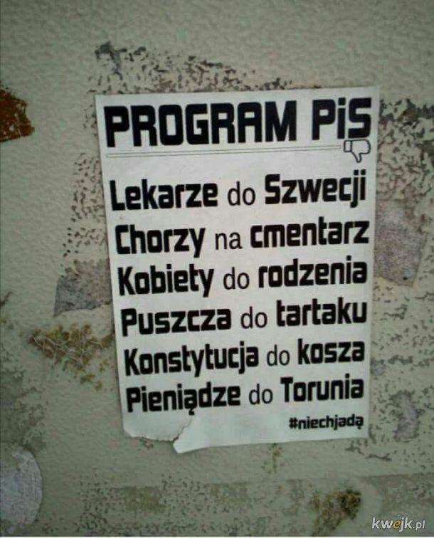 Program PIS
